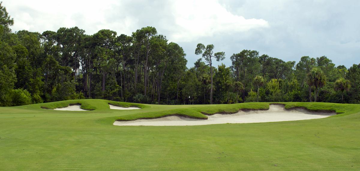 palm-golf-course-disney-reviews1